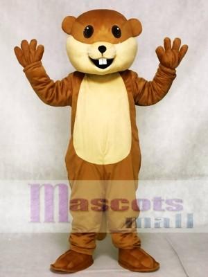 Benny Biber Maskottchen Kostüme Tier
