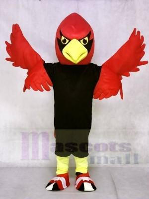 Roter Kardinal Maskottchen kostümen Vogel Tier
