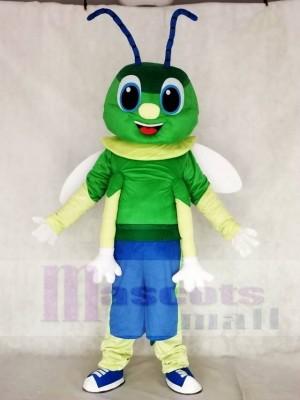Grünes Firefly Maskottchen Kostüm Insekt