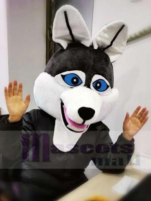 Dunkel Grau Wolf Maskottchen Kopf NUR Tier