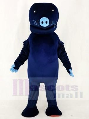 Zoo Marine Blau Manatis Maskottchen Kostüm Tier