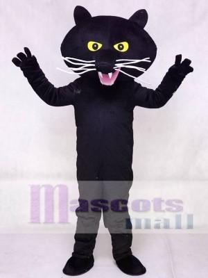 Schwarz Panther Maskottchen Kostüm