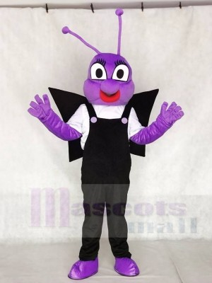 Lila und Schwarz Biene Dudu Bobo Toot Maskottchen Kostüme Insekt