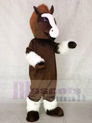 Nettes Shirley Shire Pferde maskottchen Kostüm Tier