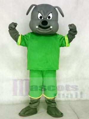 Grau Bulldogge Hund Maskottchen Kostüme Tier mit grünem Anzug