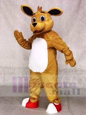 Hoch Qualität Känguru Maskottchen Kostüme Tier