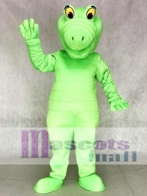 Grün Albert Alligator Maskottchen Kostüme Tier