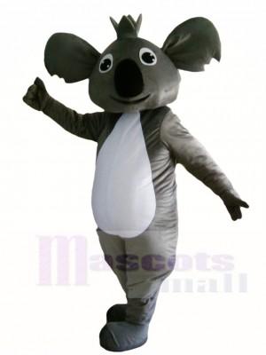 Koala Bär Maskottchen Kostüme Tier