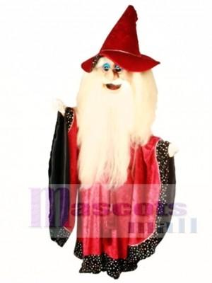 Merlin Magier Maskottchen Kostüm Menschen
