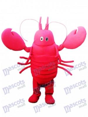 Red Krebse Maskottchen Kostüm Meeresfrüchte Ozean