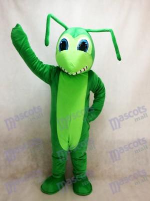 Grasshopper Maskottchen Kostüm Insekt