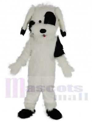 Komisch Schwarz-weißer Hund Maskottchen Kostüm Tier
