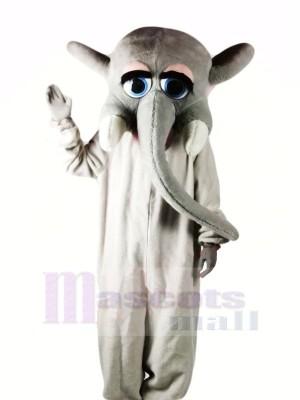 Grau Elefant mit Groß Augen Maskottchen Kostüme Karikatur