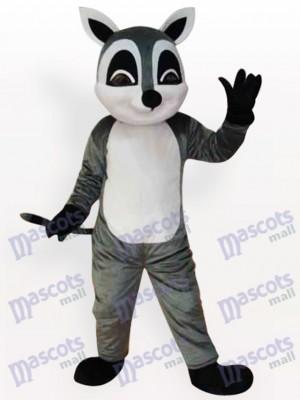 Waschbär Tier erwachsenes Maskottchen lustiges Kostüm