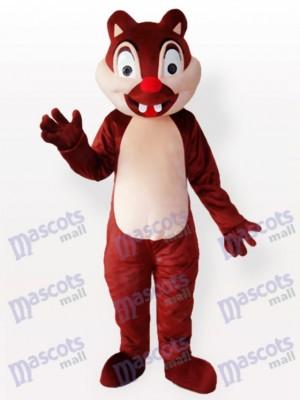 Winzige braune Eichhörnchen Mit Zwei Schneidezähnen Erwachsenen ppmehr Kostüm
