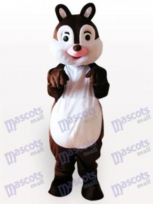 Kleines Eichhörnchen Tier Maskottchen Kostüm