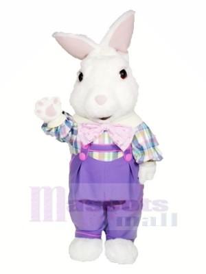 Fuzzy Hase mit Lila Passen Maskottchen Kostüme Karikatur