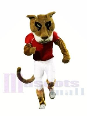 Hochschule Puma Maskottchen Kostüme