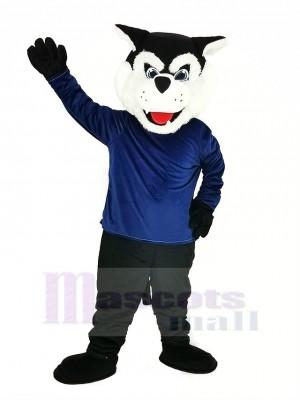 Schwarz Bearcat Binturong mit Blau Mantel Maskottchen Kostüm Tier