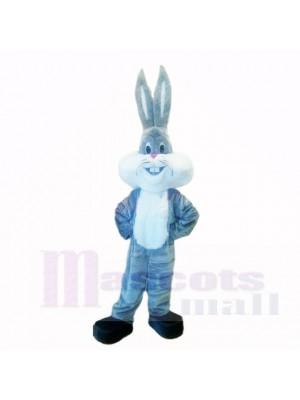 Grau Leicht Hase mit Lange Ohr Maskottchen Kostüme Karikatur