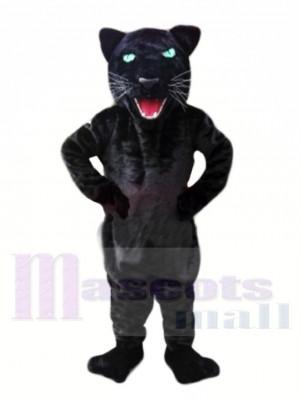 Billig Schwarzer Panther Maskottchen Kostüme