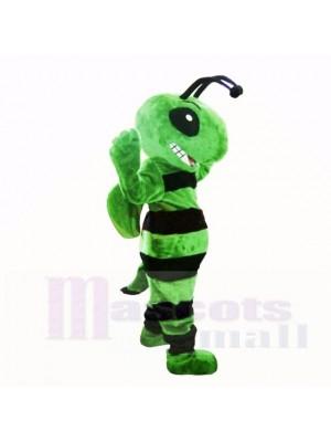 Freundlich Grün Biene Maskottchen Kostüme Erwachsene