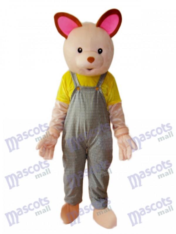 Baby-Bär Maskottchen erwachsenes Kostüm Tier