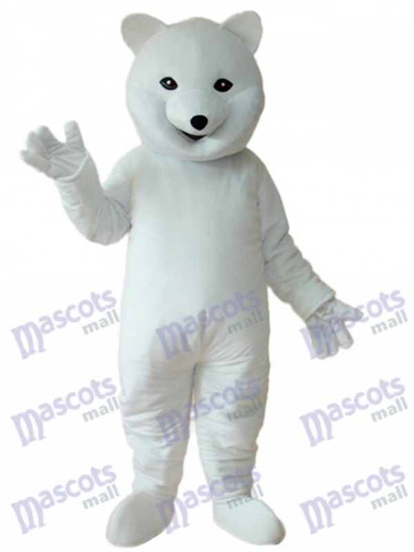 Eisbär Maskottchen Erwachsene Kostüm Tier
