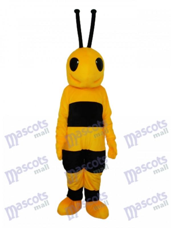 Schwarz und gelb Ameise Maskottchen Kostüm für Erwachsene Insekt