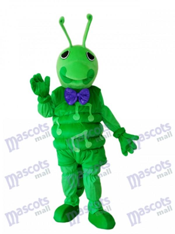 Grünes Wurm Maskottchen erwachsenes Kostüm Insekt
