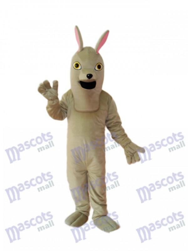 Alter Hound Hund Maskottchen Erwachsene Kostüm Tier