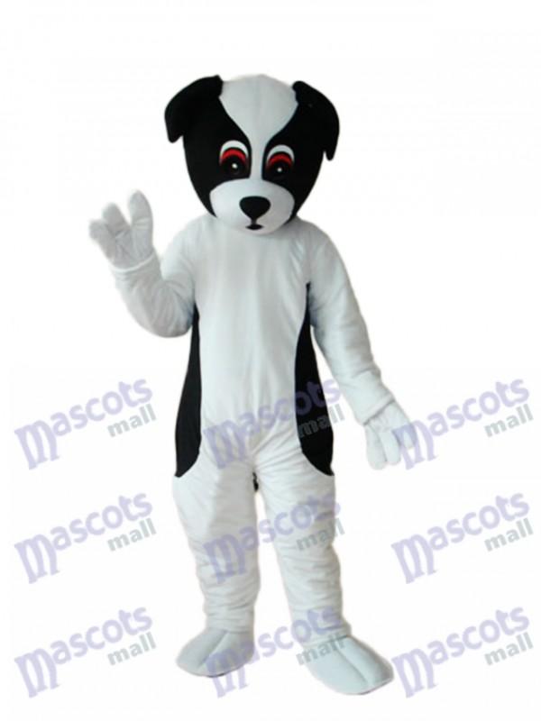 Bunte Hund Maskottchen Erwachsene Kostüm Tier
