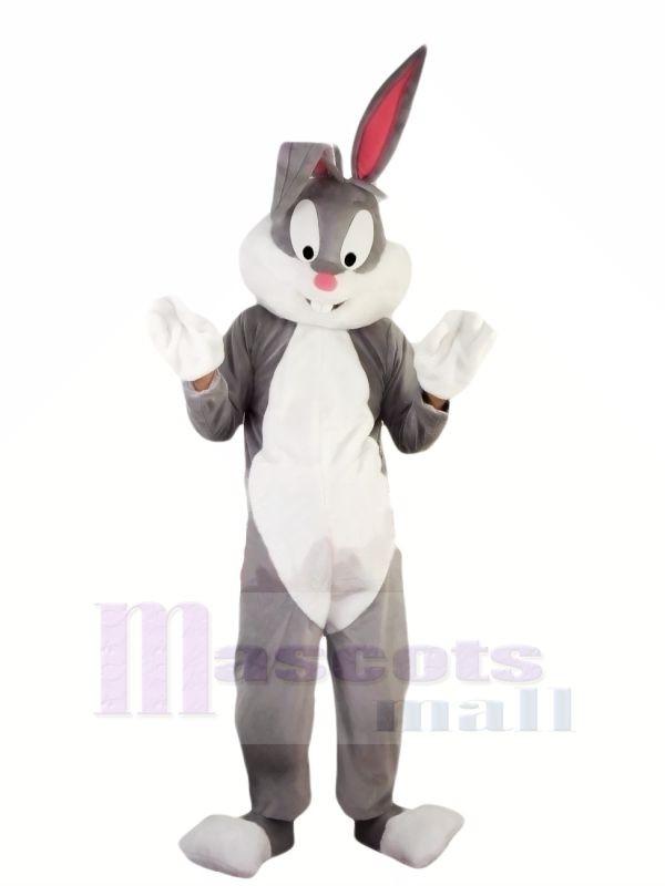 Heiß Professionelle Ostern Hase Maskottchen Kostüme Billig