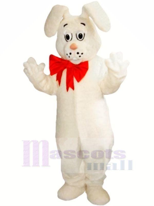 Weiß Leicht Hase Maskottchen Kostüme Karikatur