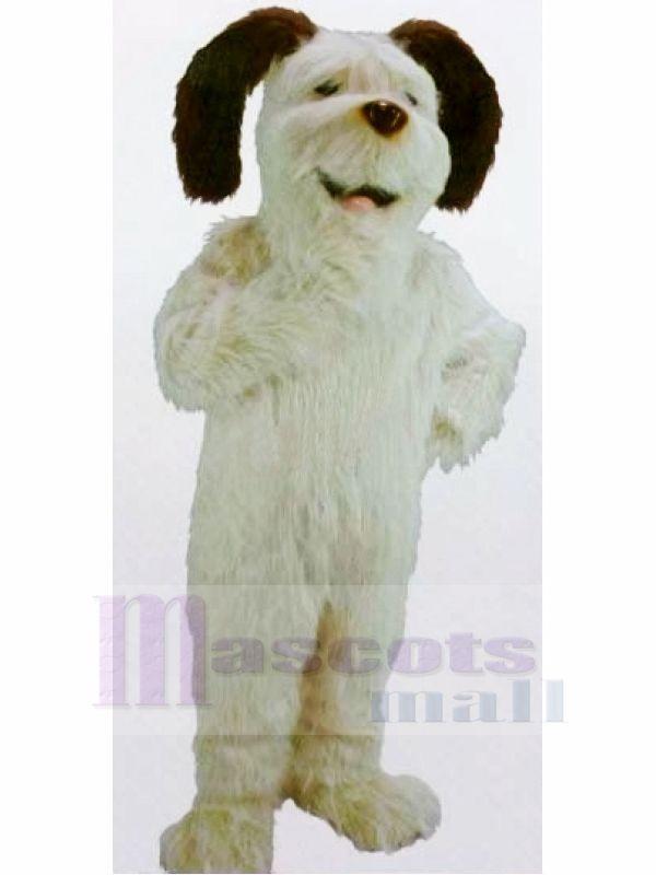 Lustig Weiß Zottelig Hund Maskottchen Kostüme Karikatur