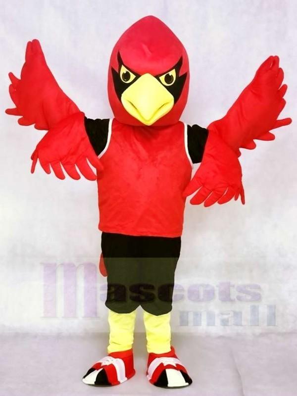 Roter Kardinal mit Weste Maskottchen kostümen Vogel Tier