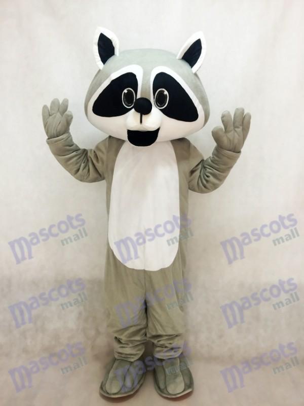 Robbie Waschbär Maskottchen Kostüm