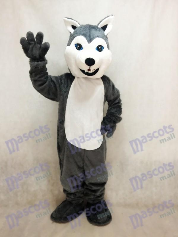 Weiß und grau Husky Hund Maskottchen Kostüm Tier
