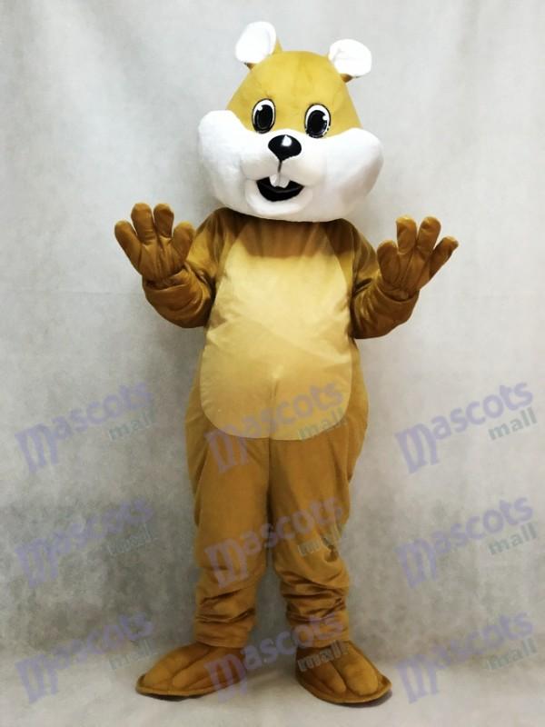 Molliges Eichhörnchen Maskottchen Kostüm mit weißem Bauch Tier