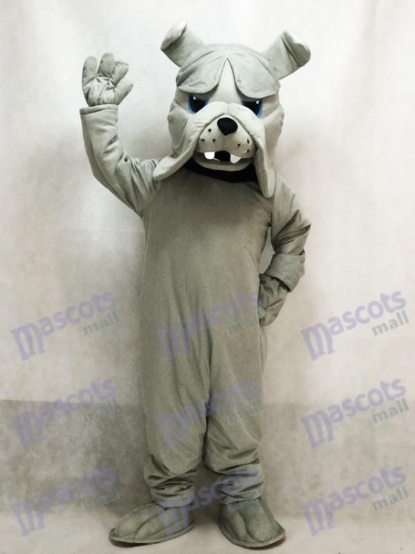 Graue Bully Bulldog Hund Maskottchen Kostüm Tier