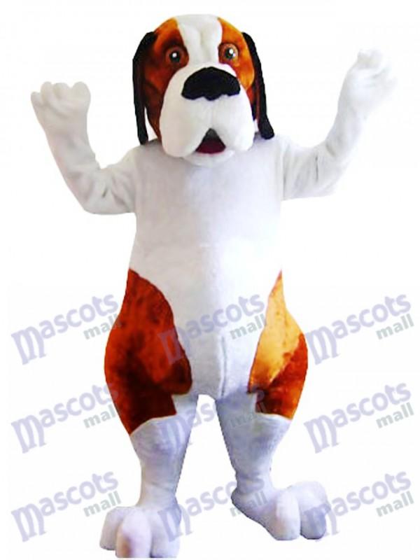 Weißes und braunes Bernhardiner Maskottchen Kostüm