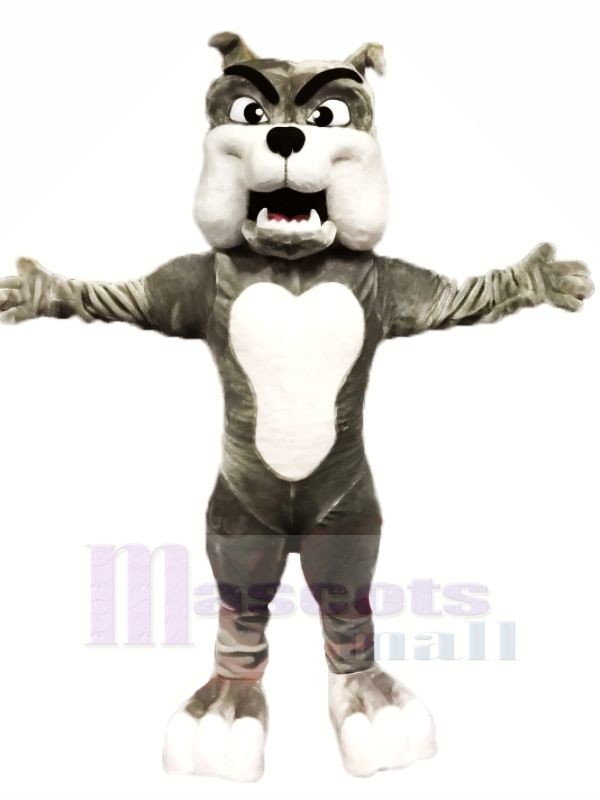Qualität Grau Bulldogge Maskottchen Kostüme Karikatur