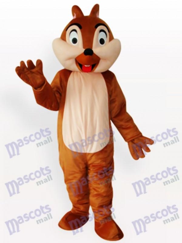 Eichhörnchen Boy Tier Maskottchen Lustiges Kostüm